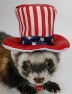 Marshall Headwear Uncle Sam Hat - Kapelusz Wuja Sama